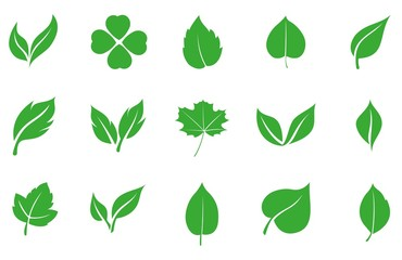 Set of green leaves in a flat style