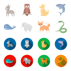 Whale, elephant,snake, fox.Animal set collection icons in cartoon,flat style vector symbol stock illustration web.
