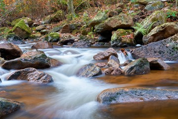 der Fluss Ilse bei Ilsenburg im Nationalpark Harz in Deutschland
