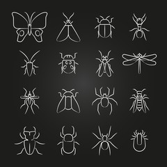 Popular insects line icons set