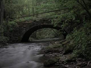 Fluss mit einsamer Brücke