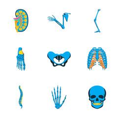 icons set in flat style human bones