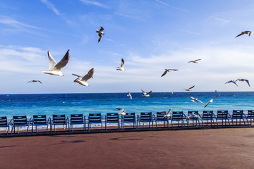 Foto op Plexiglas Nice NICE, FRANCE, on March 7, 2018. Blue chairs for rest on Promenade des Anglais, one of city characters