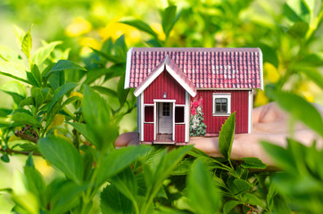 Small house in hand sun leaves plant green nature