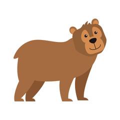 Bear wild animal vector illustration graphic design