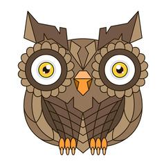 Brown owl with big eyes