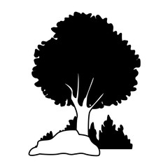 Tree with bushes and rocks vector illustration graphic design