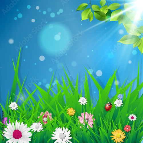 Hello Spring Spring Background Spring Design Background With