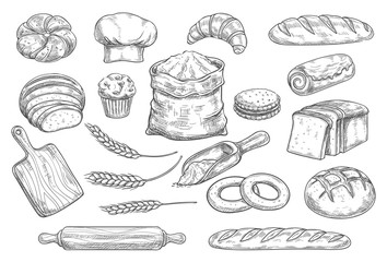 Bread and bun sketch of bakery and pastry food