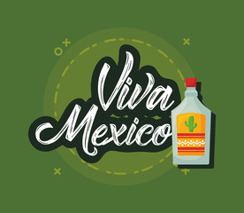 Viva mexico design with tequila bottle icon over green background, colorful design. vector illustration