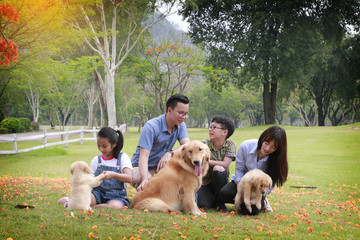 family playing at the garden with dog