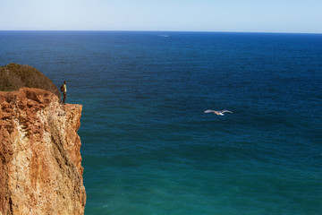 Man standing on beautiful cliff, looking to ocean and gull bird, enjoy travel holiday