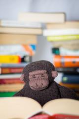 Konrad beim lesen2