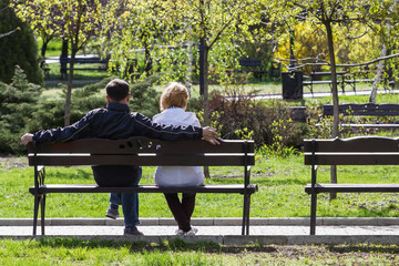 Couple in love is sitting on a bench in the park. Back view