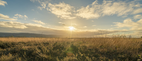 Sonnenuntergang im Moor, Landschaft