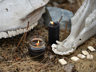 Close up of horse skull with teeth, ancient runes and burning black candles. Mystic background with ritual esoteric objects, occult and halloween concept