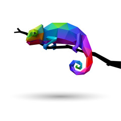 Colorful chameleon, logo concept of creativity and adaptability, low poly, eps10 vector