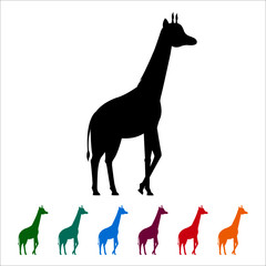 Giraffe icon, black silhouette on white background