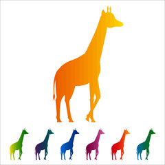 Giraffe icon, gradient silhouette on white background