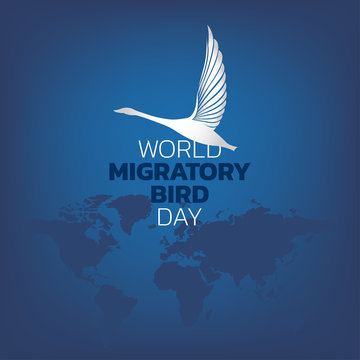 World Migratory Bird Day, vector illustration