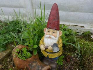 Gartenzwerg mit rotem Hut, gelber Jacke, blauer  Hose und braunen Stiefeln. Er hat eine Axt in der Hand und steht vor einer verwitterten, weißen Bretterwand in einem ungepflegtem Garten