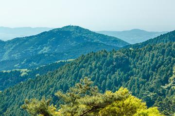 新緑の山並み