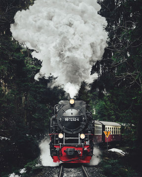 Famous sightseeing train in Switzerland, the Glacier Express in