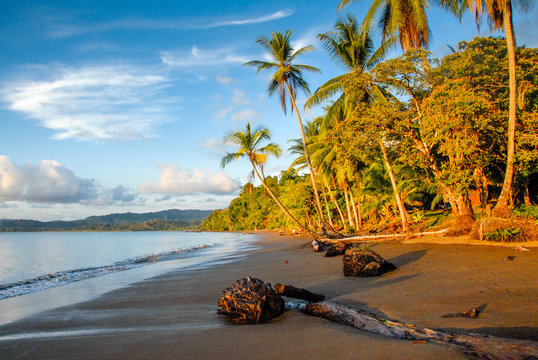 The black sand beach of Bahia Drake at sunset