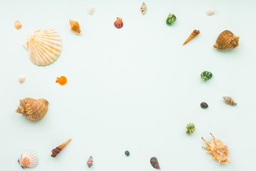 Sea shells on pastel turquoise background. Flat lay, top view