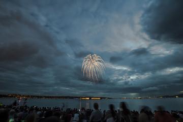 People enjoying firework display against cloudy sky at night