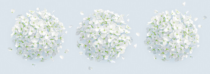 Tree vector white Hydrangeas background