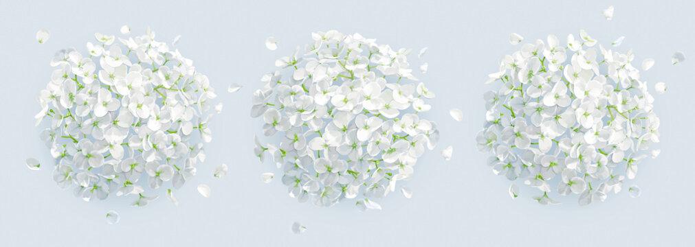 Tree vector white Hydrangeas background