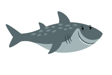 Shark sea animal cartoon icon