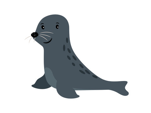 Seal cute sea animal icon
