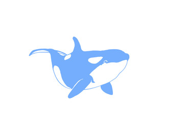 Graphical color whale isolated on white background,vector icon,tattoo ,logo