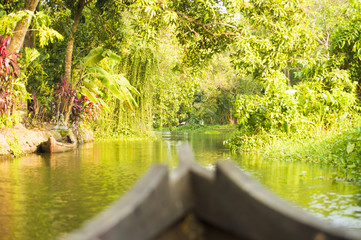 Blurred canoe sailing on the lush and green backwaters in Alleppey, Kerala, India.