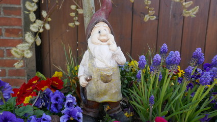Alter verwitterter Gartenzwerg steht vor einer braunen Holzwand in einem Blumenbeet