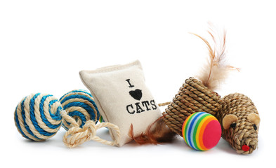 Cat toys and accessories on white background. Pet care