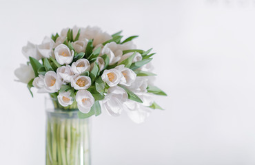 A bouquet of white tulips in a glass vase on a white background with a place for dext and writing. Decoration of a postcard