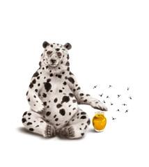 ours-dalmatien-miel-protecteur