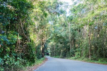 Curved asphalt road winding through Australian forest.