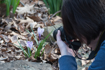 The photographer gets in close to photograph new spring growth in Oklahoma. A bokeh effect was captured.