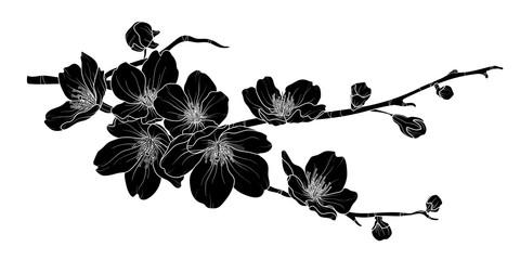 Cute hand drawn silhouette sakura branch set 2.