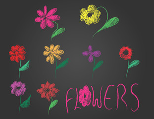 hand drawn flowers and text on black background