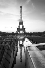 Eiffel tower. paris. france. White and black photography.