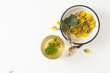 Cup with infusion of coltsfoot and flowers with leaves on white table.