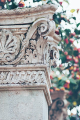 Capital of the antique column and roses flowering garden