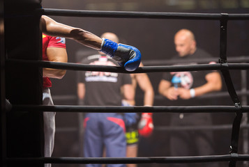 MMA Boxers fighters fight in fights without rules in the ring