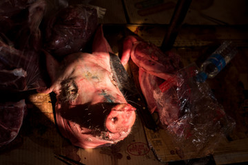 Head of dead pig lies at the wooden platform in the glory of the morning sun, Cambodian local street food market