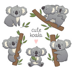 Cute gray koala set in differet poses: sitting, climbing the tree, with a baby. Vector illustration cartoon animal